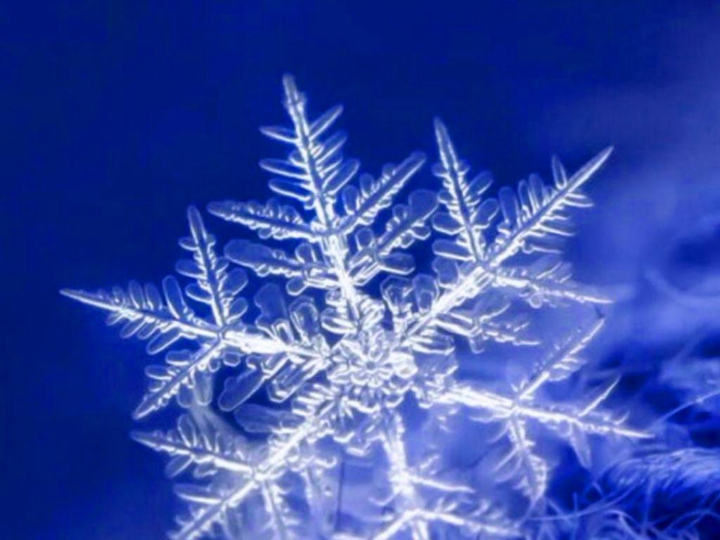 10 Blue Wallpapers That Will Look Perfect On Your Nokia 8 3 5g 03 Snowflake Hd Wallpapers Desktop Background Mobile Phone Wallpapers