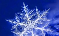 10 Blue Wallpapers That Will Look Perfect on Your Nokia 8.3 5G - #03 - Snowflake
