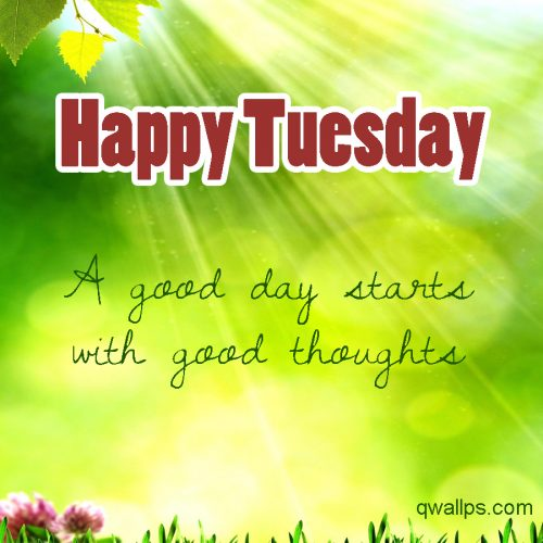 20 Best Happy Tuesday Wallpapers with Thought of the Day 01 - A good day starts