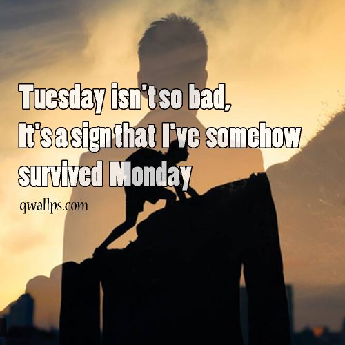 20 Best Happy Tuesday Wallpapers with Thought of the Day 03 - Tuesday isn't so bad