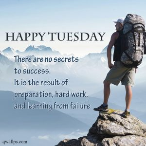 20 Best Happy Tuesday Wallpapers with Thought of the Day 06 - There are no secrets to success