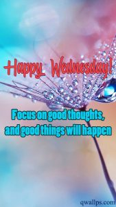 20 Best Wednesday Thought Quotes Wallpapers 02 - Focus on good thoughts