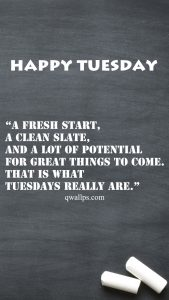 20 Best Happy Tuesday Wallpapers with Thought of the Day 08 - That is what Tuesdays really are