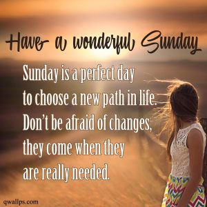 20 Best Sunday Thoughts and Motivational Quotes Images 05 - Sunday is a perfect day to choose a new path in life