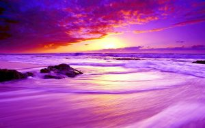 Beach Wallpaper for Desktop Background with Low Exposure Photography of Purple Beach