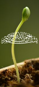 Islamic Wallpaper for Mobile Phone with Bismillah Calligraphy