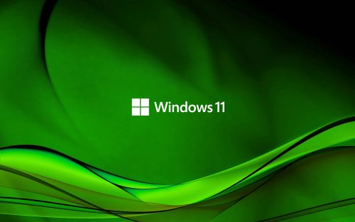 Abstract Wave in Green for Windows 11 Wallpaper